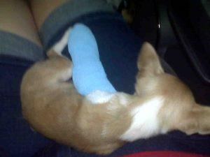 Awe, Broken leg